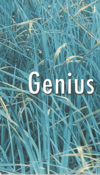 Genius Loci – I giochi d'acqua